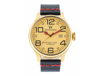 Power Dive, gold/gold, genuine vintage leather strap smooth surface in black